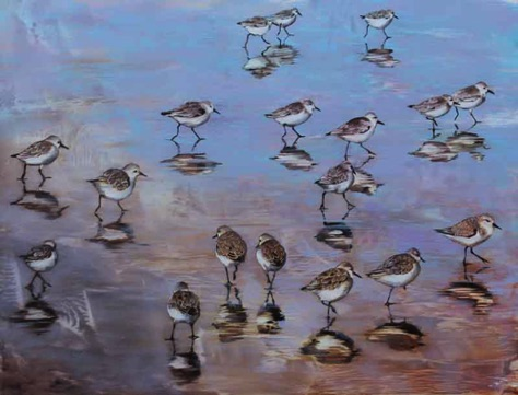 'snowy plovers' 18 x 23.5 oil on aluminum