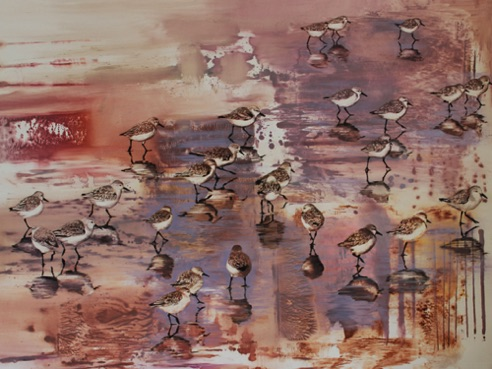 Snowy Plovers 36 x 48 oil on paper on aluminum