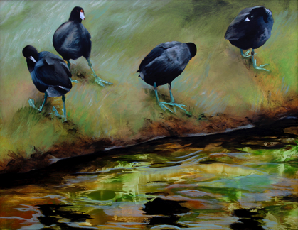 'coots' 23.5 x 30 oil on aluminum